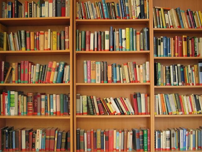 bookshelf-lots-of-books